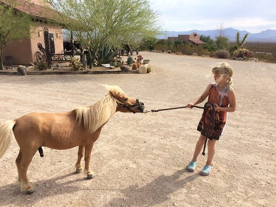 Yucca, อาริโซน่า: Stagecoach Trails Guest Ranch