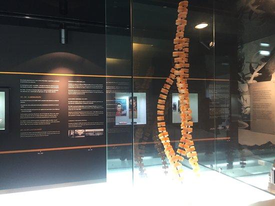 Museu do Sabao