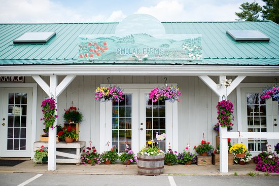 North Andover, MA: Smolak Farms in the Spring