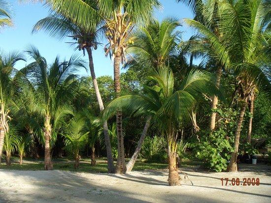 Turneffe Island, Belize: מסביב