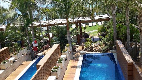 Amathus Beach Hotel Limassol: Mehdi