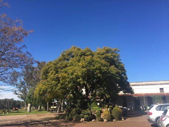 Nueva Helvecia, أوروجواي: photo1.jpg