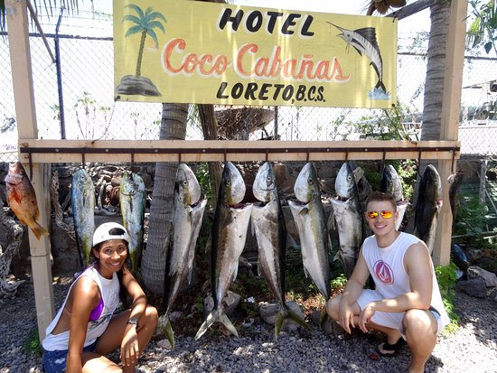 Coco Cabanas Loreto: Caught my first yellow-tail this day! We used their fillet station for our catch. I'm hooked!