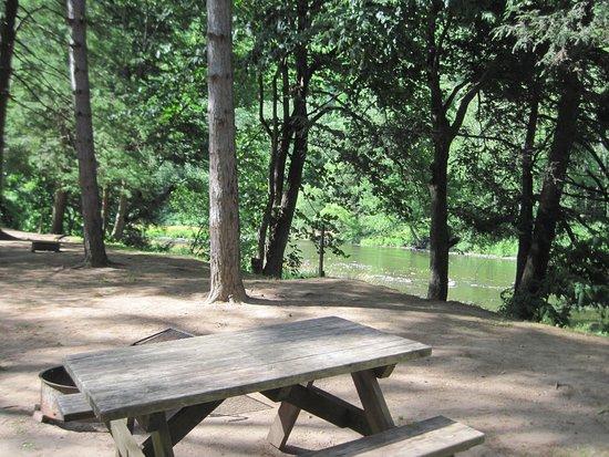 Cedar Run, เพนซิลเวเนีย: Creek view tent sites (somewhere around site 40)