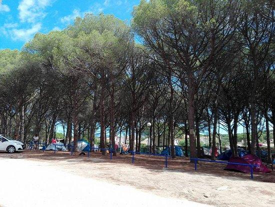 Camping Riells