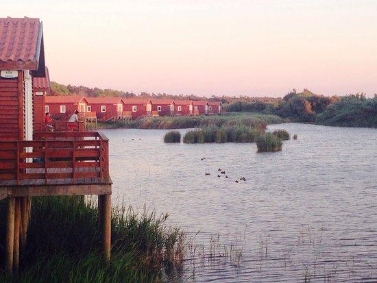 Mira, Portugal: Lake