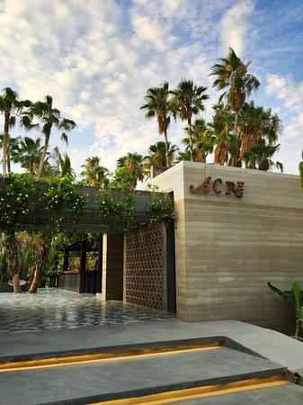 Acre Restaurant San Jose Del Cabo