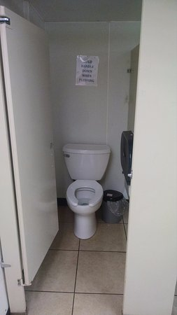 Ashford, CT: New toilets in bathroom near pool