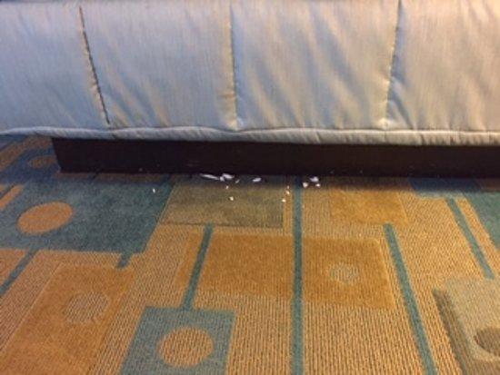 La Quinta Inn & Suites Fort Worth City View: Underneath bed; yuck!