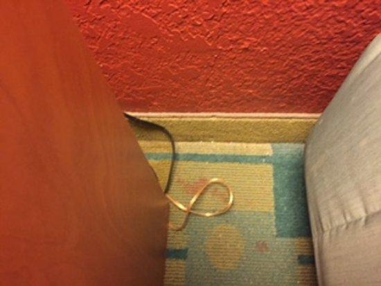 La Quinta Inn & Suites Fort Worth City View: Stains on carpet.
