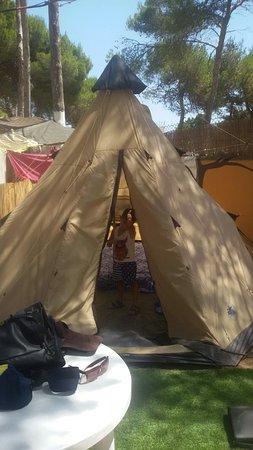 Camping Cala Nova : Tipi