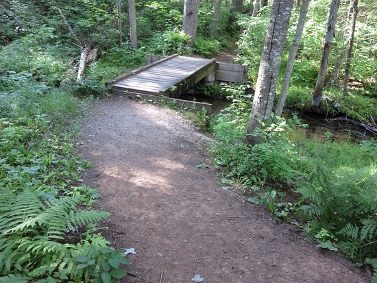 Dunbar, WI: Footbridge crosses a small tributary of the Pike River