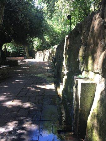 Parco di San Leonardo di Siete Fuentes: photo0.jpg
