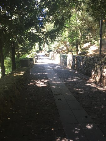 Parco di San Leonardo di Siete Fuentes: photo2.jpg