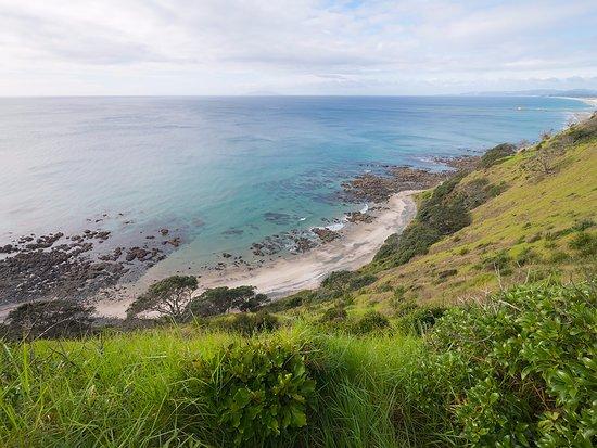 Mangawhai, Nueva Zelanda: Looking down on the beach section of the loop track