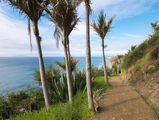 The view south towards Mangawhai Heads Beach