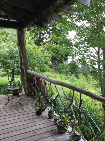 New Horton, Canada: Orchids along the porch overlooking the bay.
