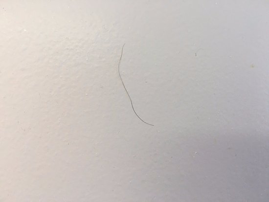 Sea Watch Resort: One of the many hairs stuck everywhere in our bathroom