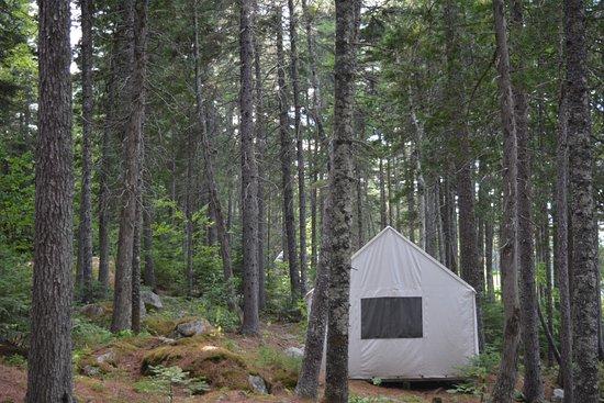 Penobscot Outdoor Center : cabin campsite