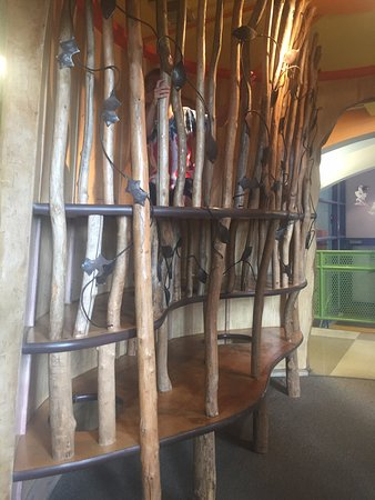 Children's Museum and Theatre of Maine : Cool tree climber