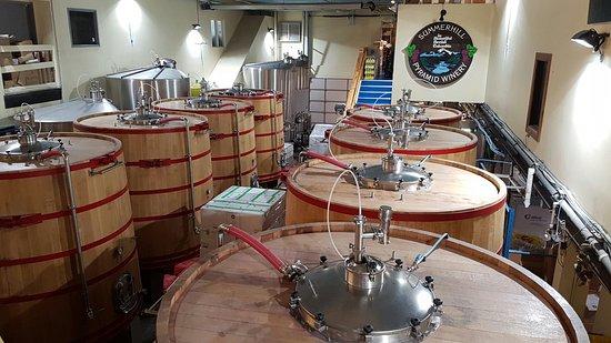 Summerhill Pyramid Winery: 20160806_165741_large.jpg