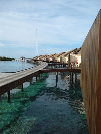 The Residence Maldives: As we came out of our villa , a walk along the jetty to go for breakfast , please don't wear hea