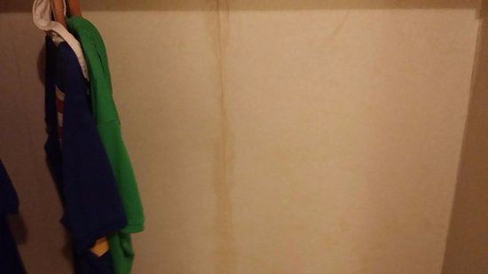Wildwood Crest, NJ: water stains down the walls wall paper falling off