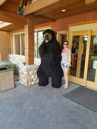 Hidden Ridge Resort: 20160627_144858_large.jpg