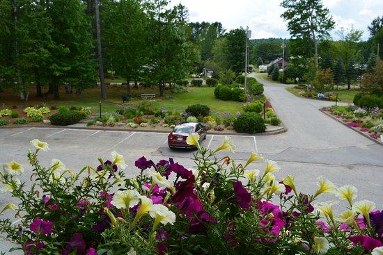 Wilton, ME: Il parcheggio