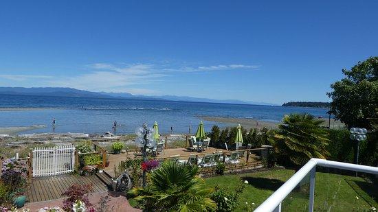 Buena Vista by the Sea 사진