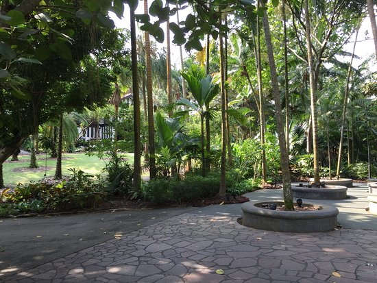 Singapore botanic gardens photo de jardin botanique de for Au jardin singapore botanic gardens