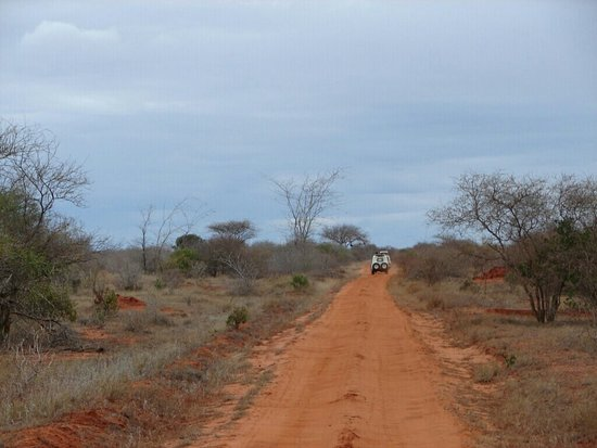Tsavo National Park East, Kenya: DSC00424_1443447333147_23_large.jpg