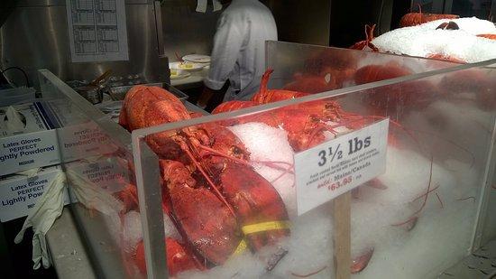 The Lobster Place : Diferentes tamaños de langosta para elegir