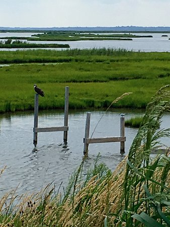 Absecon, Nueva Jersey: Up The Creek a bit