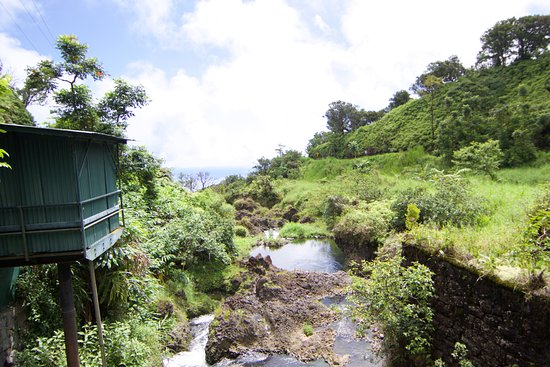 Valley Isle Excursions: another waterfall with view out to sea