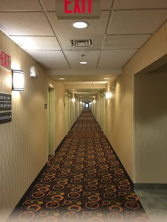 Hampton Inn & Suites Grand Rapids Airport / 28th St: photo2.jpg