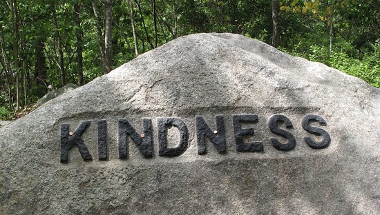 Dogtown Common : Kindness