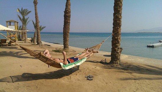 SENTIDO Palm Royale Soma Bay: image-0-02-01-977a3adc6b7c56201ce157b45873e3b979d8c9abb3270b23d8a92d1490ad74c5-V_large.jpg