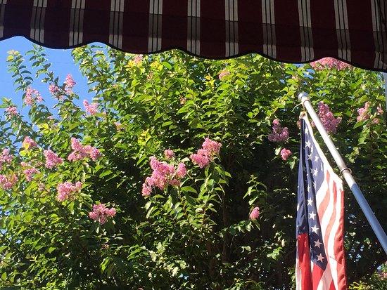 Spring Lake Inn: Crepe Myrtles in full bloom