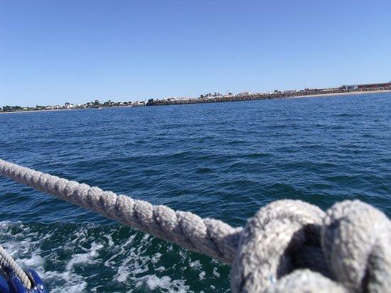 Noirmoutier en l'Ile, France: C'est beau la mer !