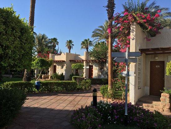 Hilton Sharm El Sheikh Fayrouz Resort Photo