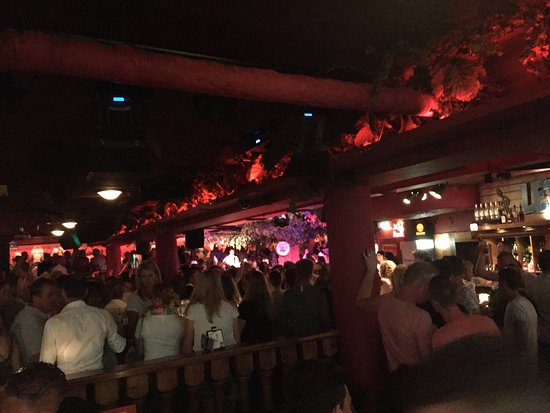 it's party time - picture of crazy pianos, the hague - tripadvisor