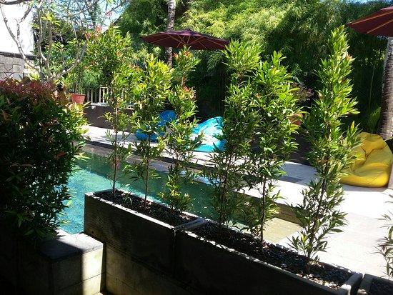 The Studio Bali: 20160728_053100_large.jpg
