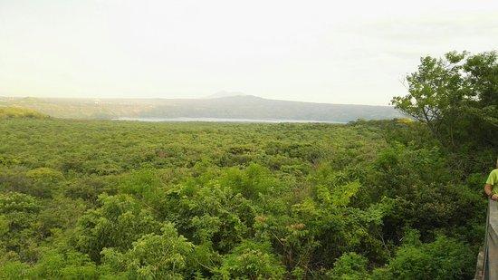 그라나다 사진