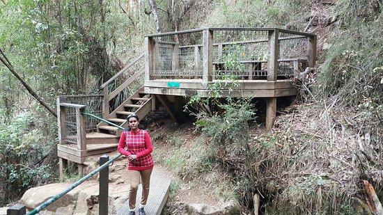 Olinda, أستراليا: National Rhododendron Gardens