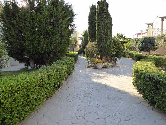 아비토스 리조트 아파트먼츠 호텔 사진
