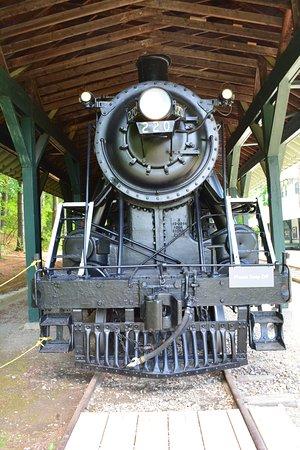 Shelburne, VT: Treno in stazione