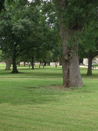 Abilene照片