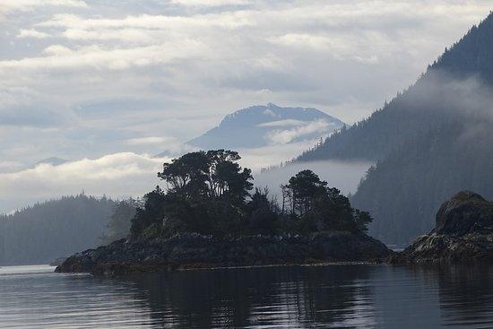 Telegraph Cove Resort: uitzicht vanaf boot naar Knight Inlet