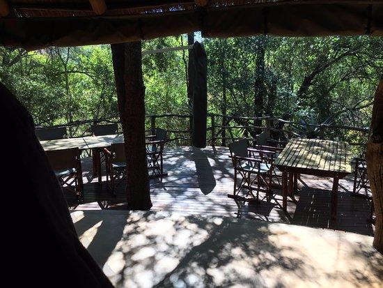 Jaci's Safari Lodge: Restaurant area looking outwards